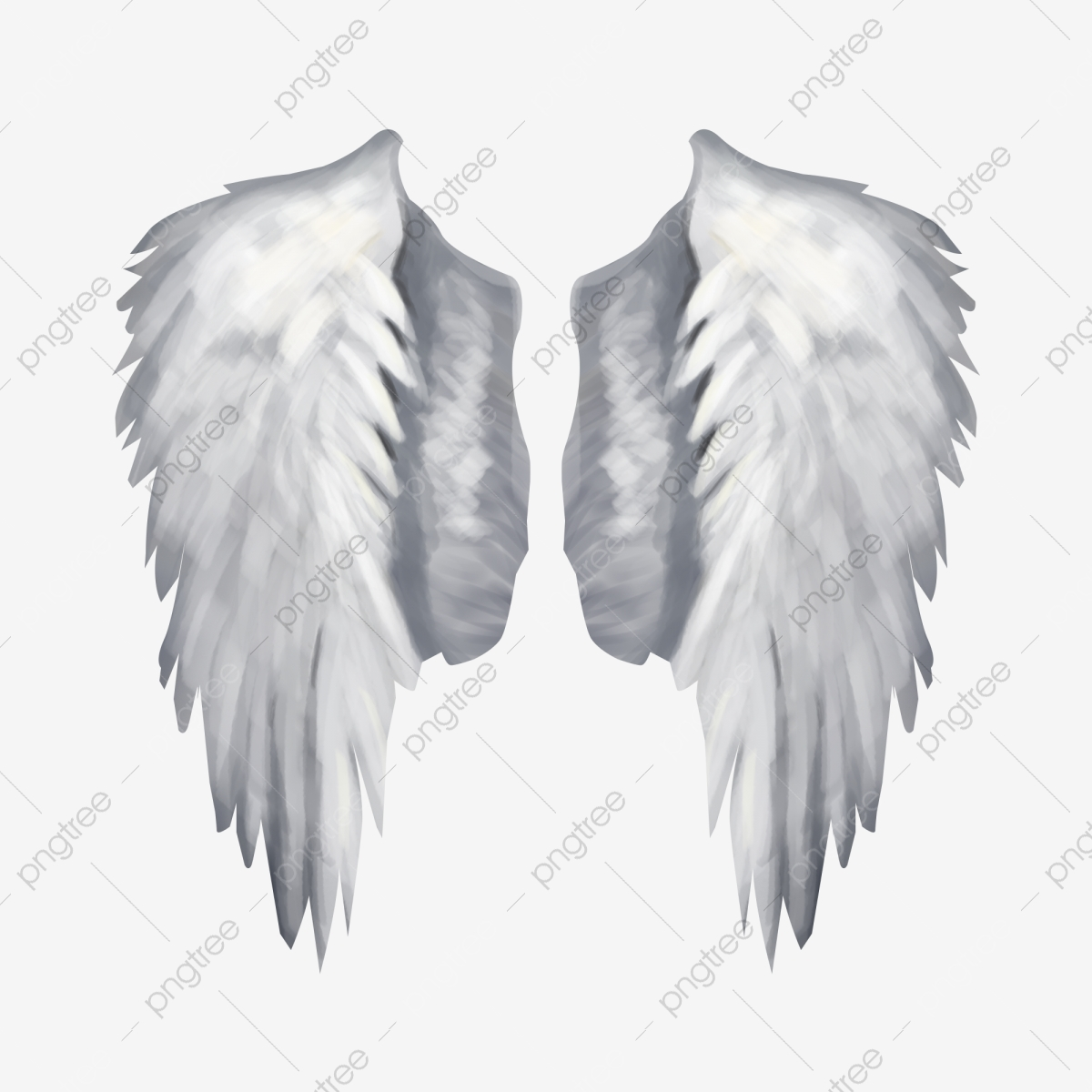 Dessin Ange Realiste réaliste ailes d'ange attiser doux, réaliste, blanc, ailes