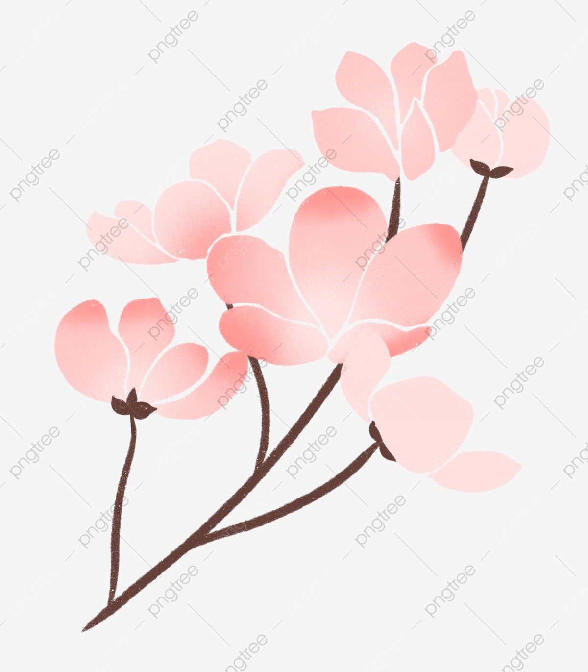Spring Pink Flowers Illustration Spring Flowers Cartoon Illustration Spring Illustration Png Transparent Clipart Image And Psd File For Free Download