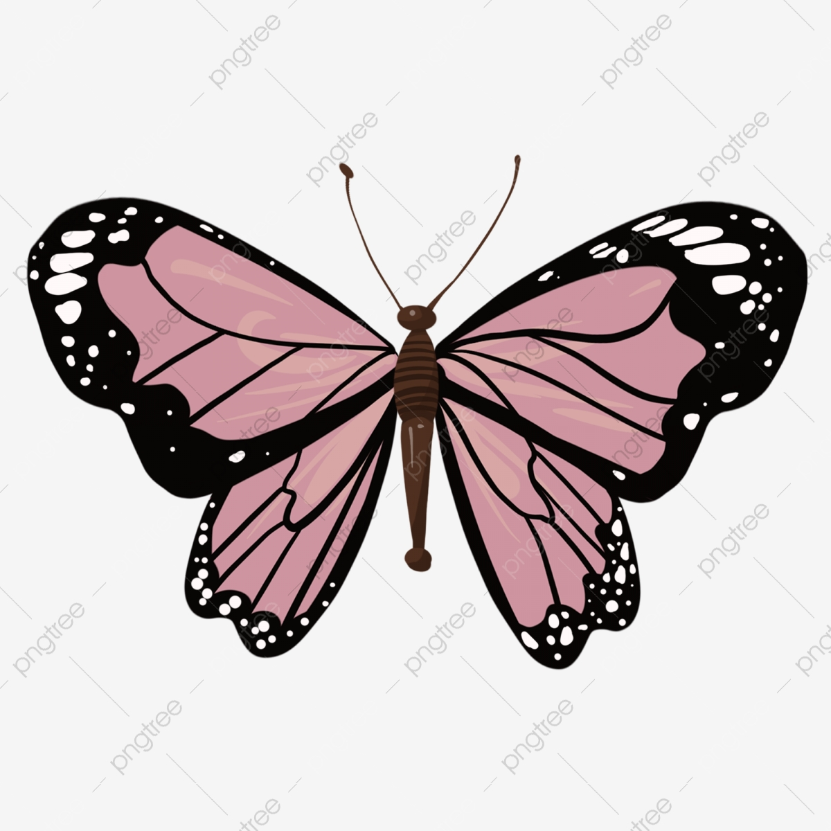 Beautiful Black Purple Butterfly Black Purple Butterfly Png Transparent Clipart Image And Psd File For Free Download