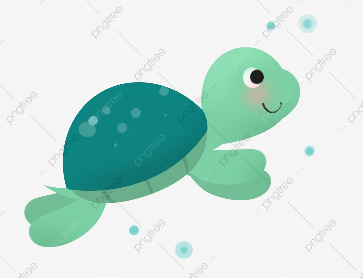 Cartoon Animal Sea Turtle Cartoon Animal Marine Life Sea Turtle