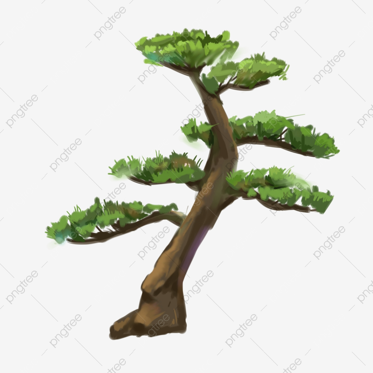 Cartoon Green Pine Tree Illustration Green Leaves Curved Pine Cartoon Pine Png Transparent Clipart Image And Psd File For Free Download