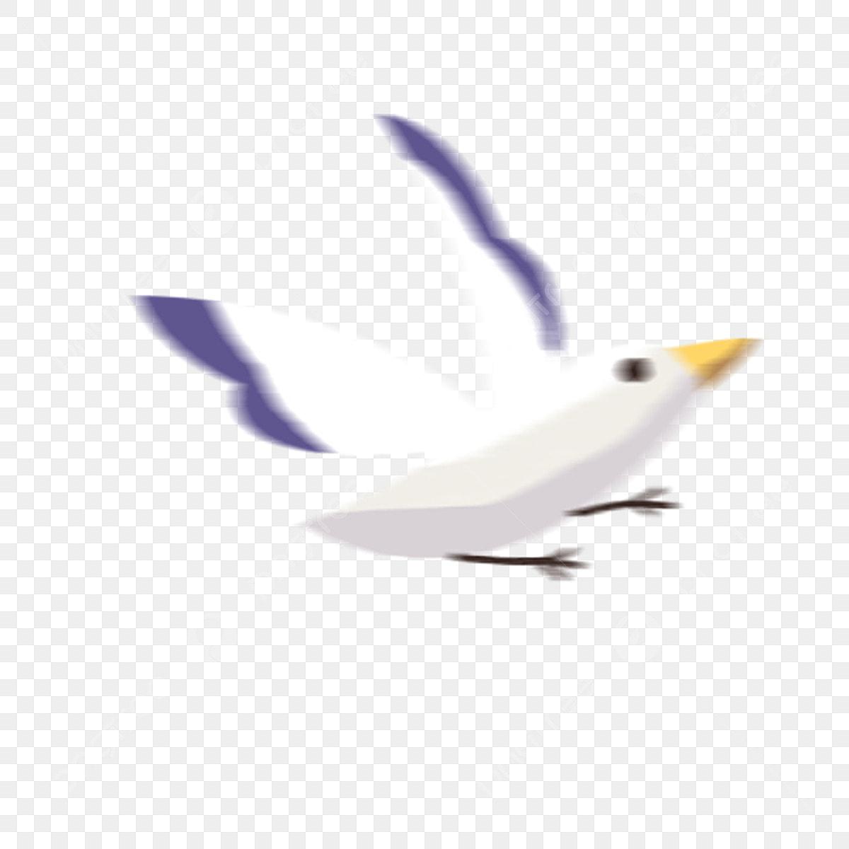 Burung Merpati Kartun Burung Kartun Burung Putih Burung