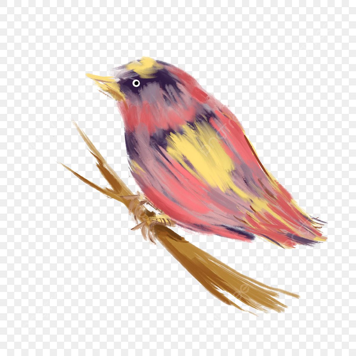 Burung Guntur Burung El Muat Turun Percuma El Burung