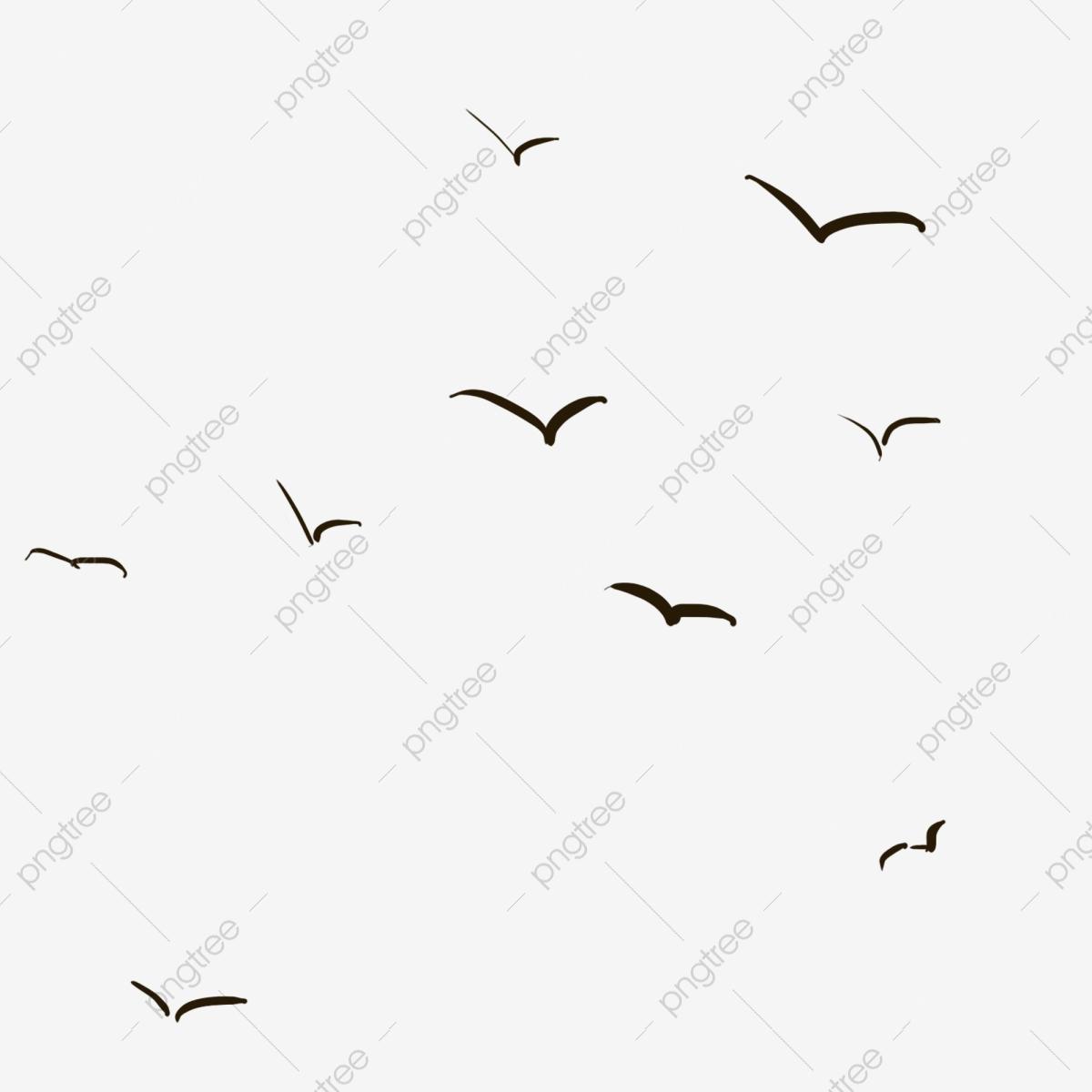 السماء وحلقت وارتفاع الطيور سماء تحلق ارتفاع Png وملف Psd للتحميل مجانا