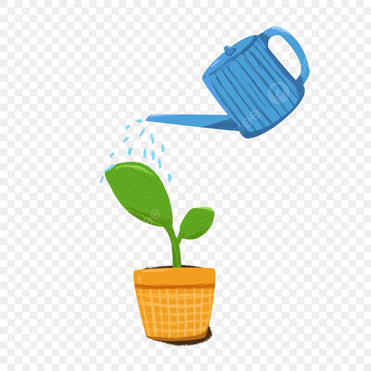 Arrosage Pour Plantes En Pot vert arrosoir arrosage plante en pot, vert, plante en pot