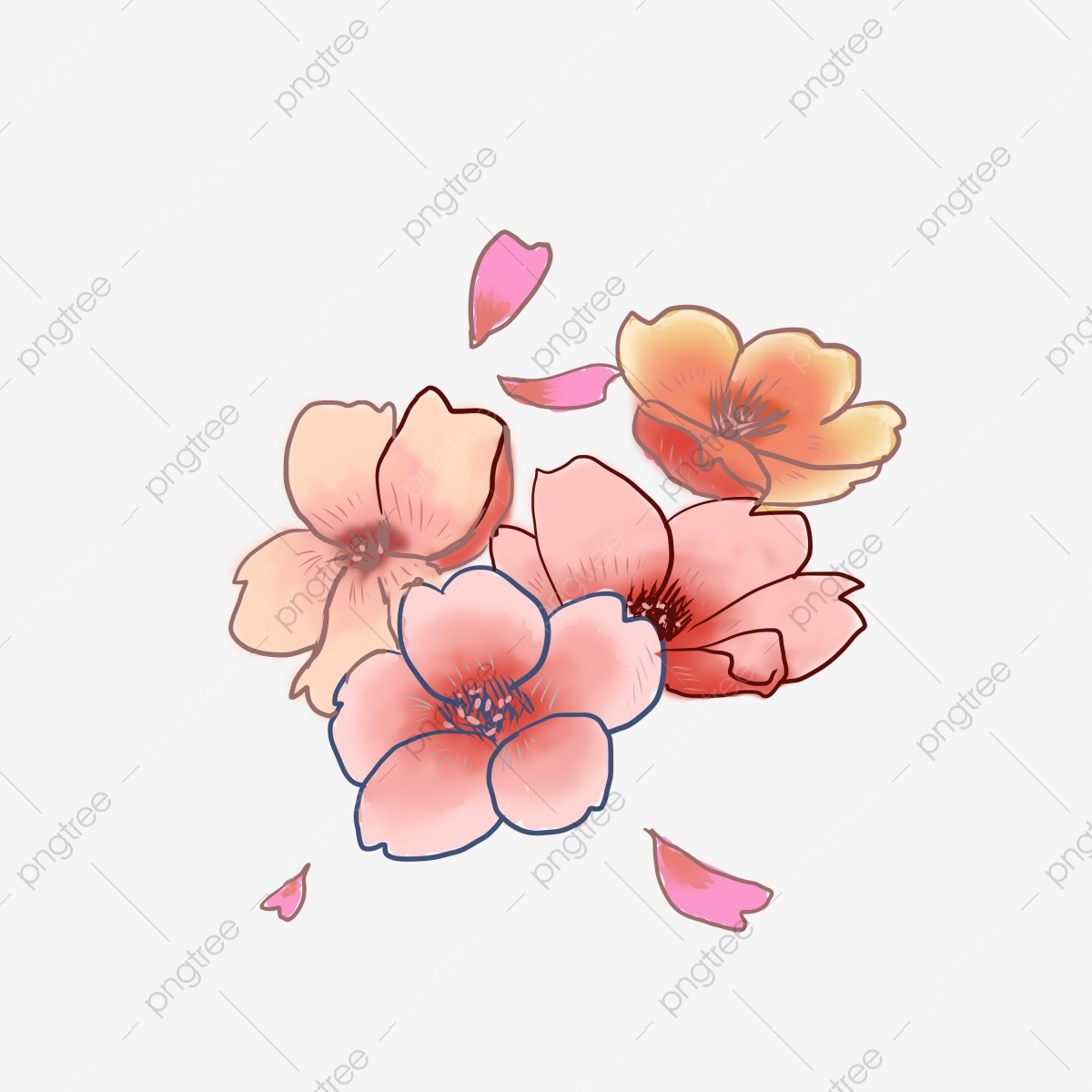 Japanese Cherry Blossom Flower Illustration Cherry Blossom Clipart Japanese Cherry Blossoms Beautiful Cherry Blossoms Png Transparent Clipart Image And Psd File For Free Download