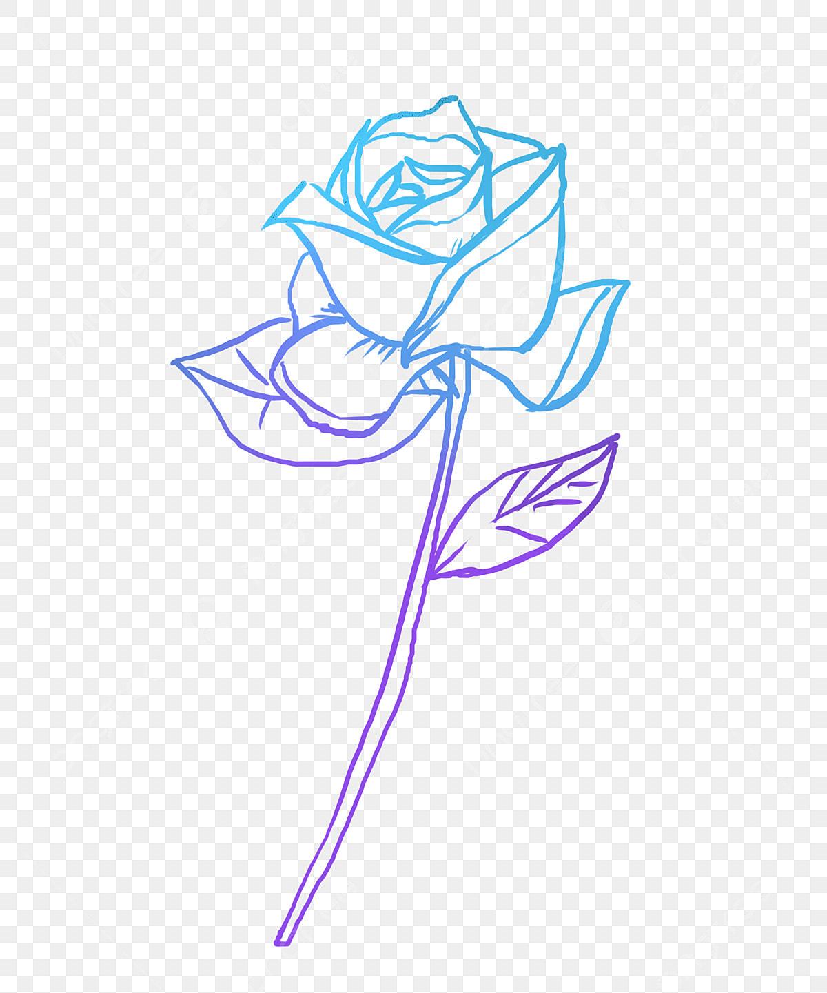 Rose Fleur Fleur Dessin Rose Au Fleur Fichier Png Et Psd Pour