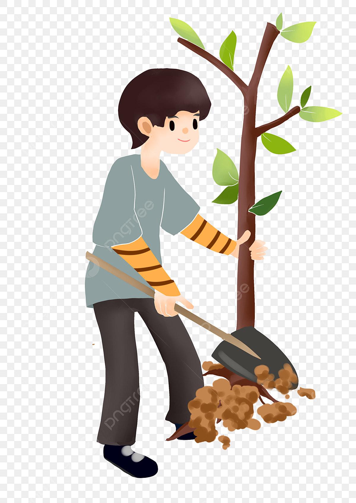صورة شخصية يوم الشجرة صبي صغير يزرع شجرة أوراق خضراء زخرفة نباتية يزرع شخصية كرتونية صبي صغير يزرع شجرة Png وملف Psd للتحميل مجانا