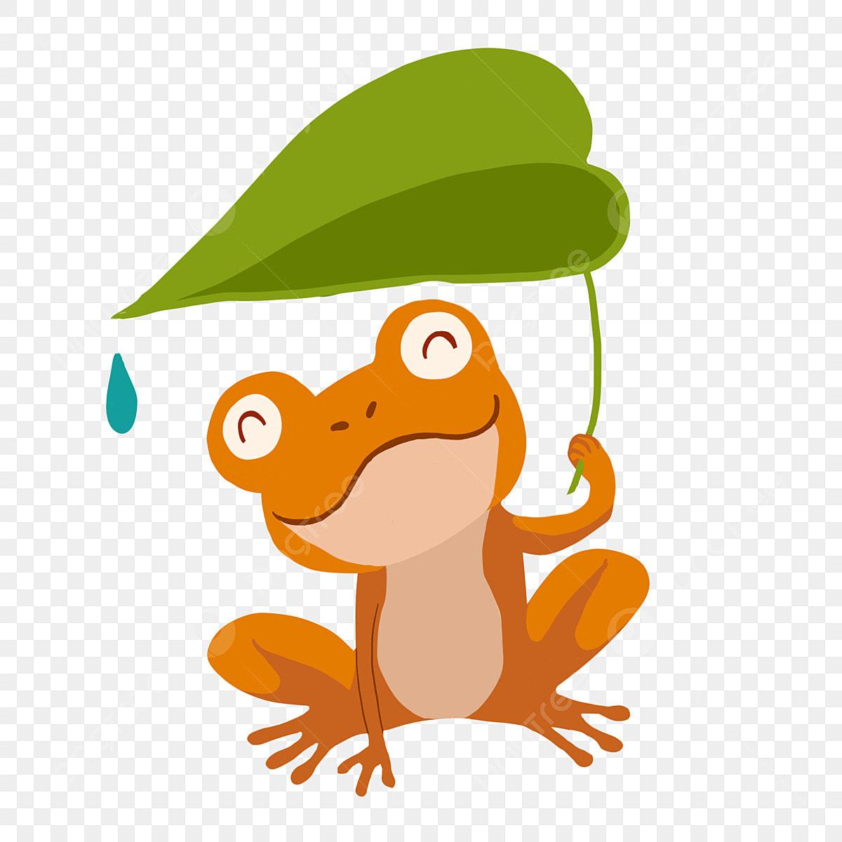 緑の葉 カエル 動物 オレンジ色のカエルの漫画イラスト 緑の葉