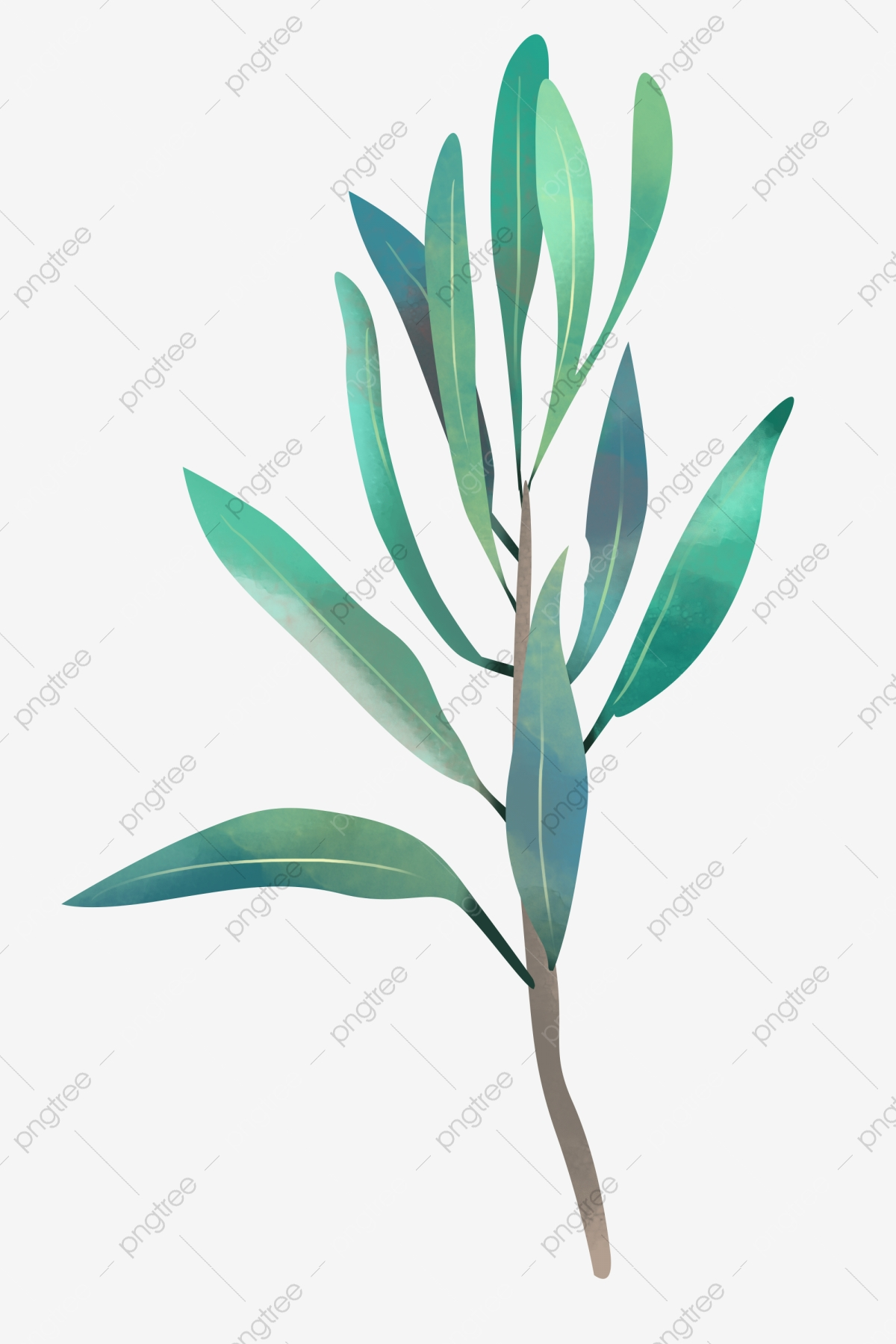 Indoor Plant Png - Indoor Flower Plant Png , Free Transparent Clipart -  ClipartKey