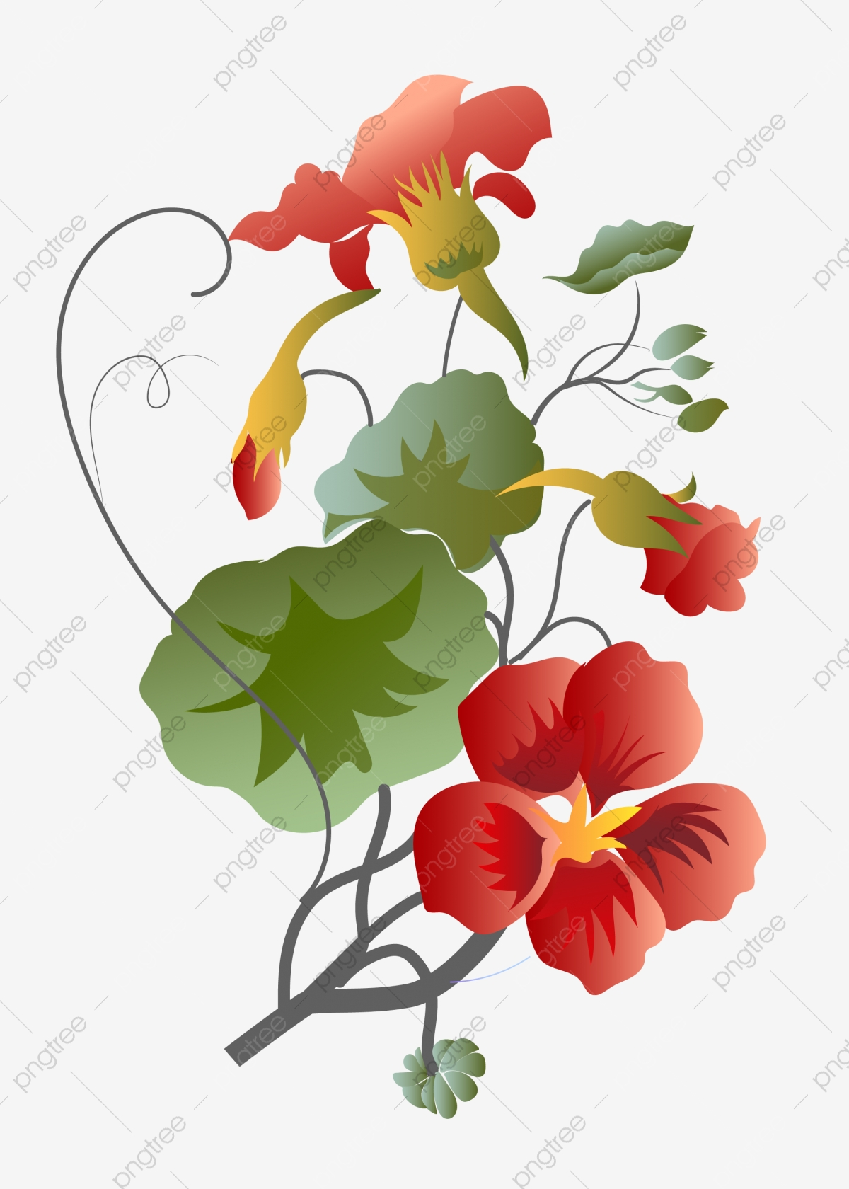 Red Beautiful Flower Vine Illustration Red Flowers Cartoon Illustration Flower Vine Illustration Png And Vector With Transparent Background For Free Download