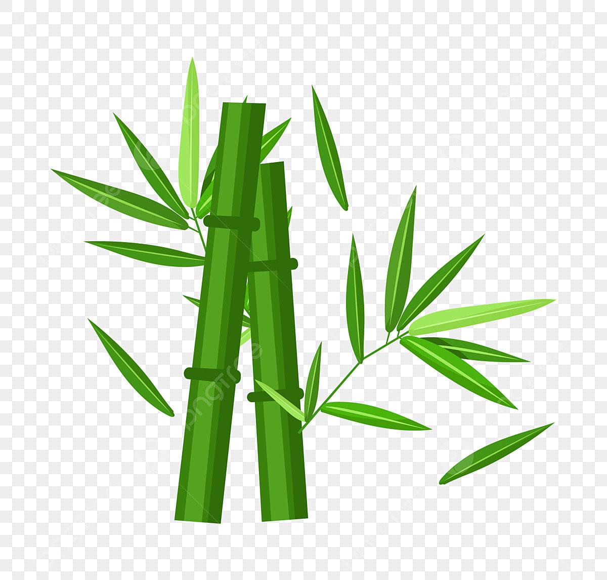 Bambou Vert Illustration De Dessin Animé Illustration De