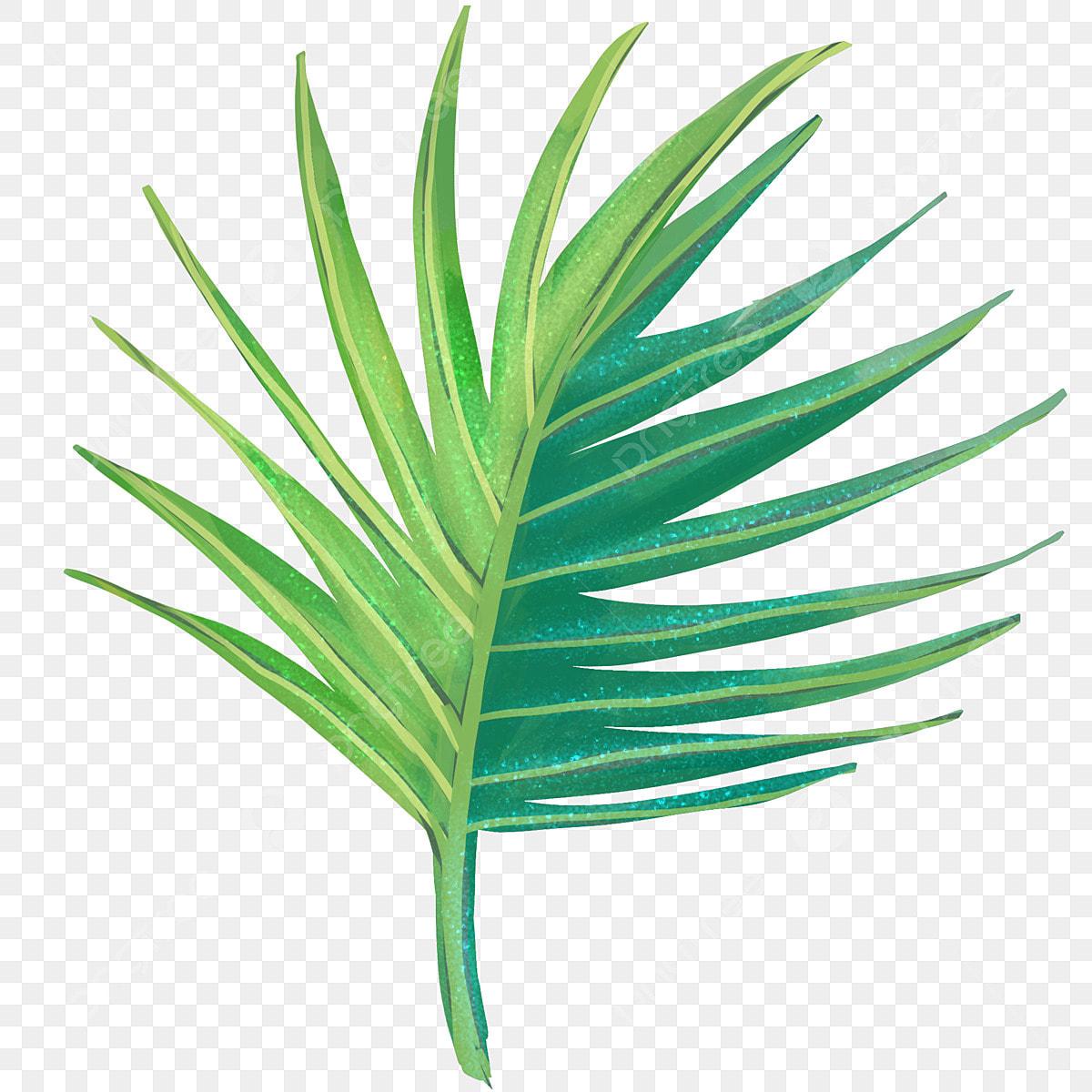 Tropical Green Big Leaf Illustration Summer Plants Tropical