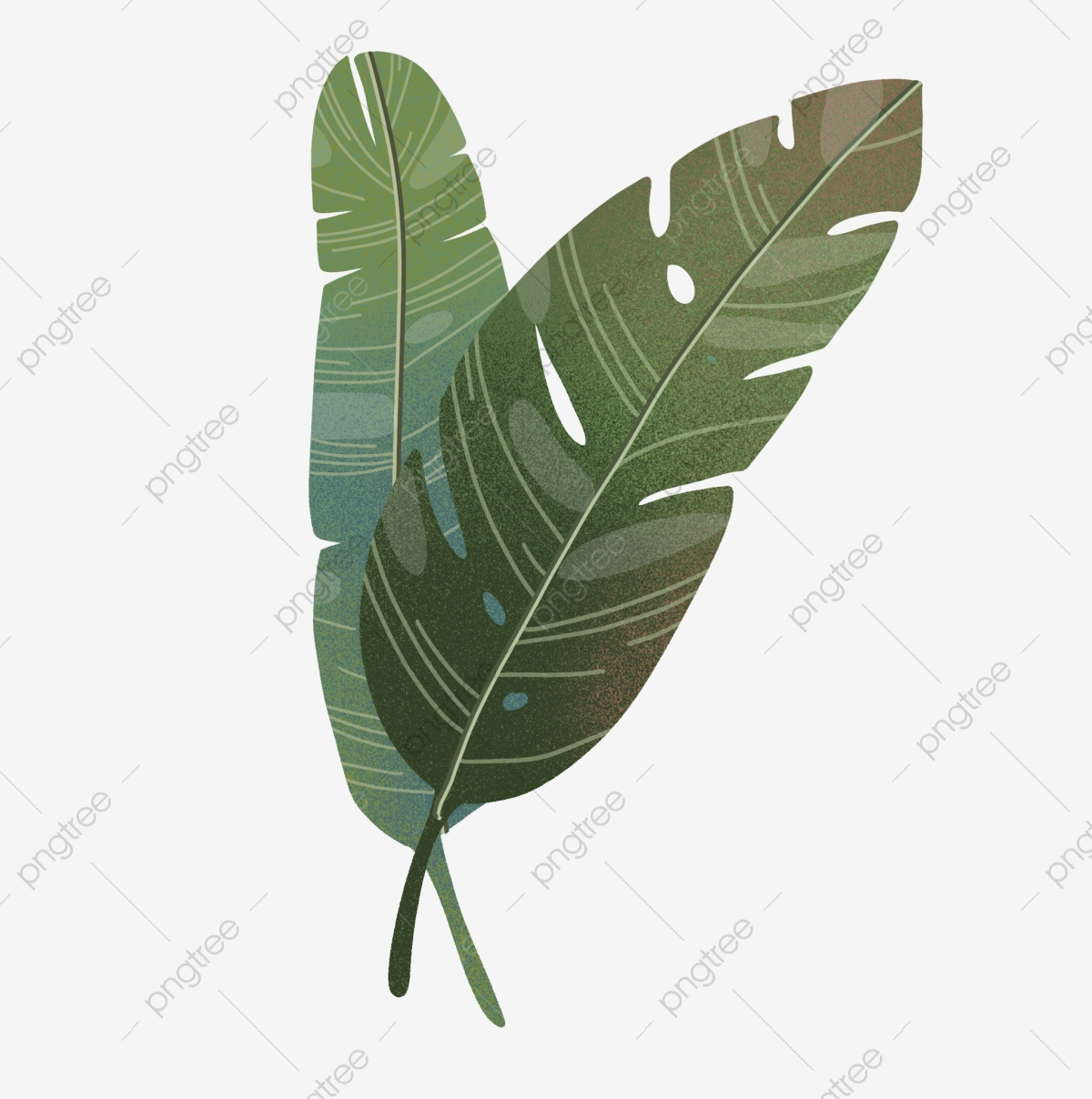 Tropical Rainforest Leaves Plant Green Plant Fresh Png Transparent Clipart Image And Psd File For Free Download To get more templates about posters,flyers seamless pattern with tropical leaves: https pngtree com freepng tropical rainforest leaves 4706081 html