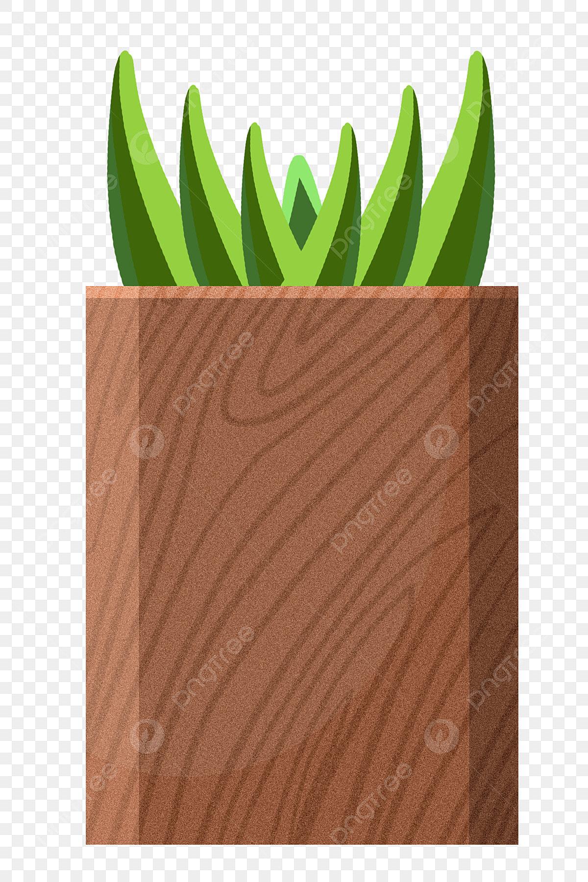 Pot Plante En Bois plantes en pot plantes en bois illustrations de plantes aloe