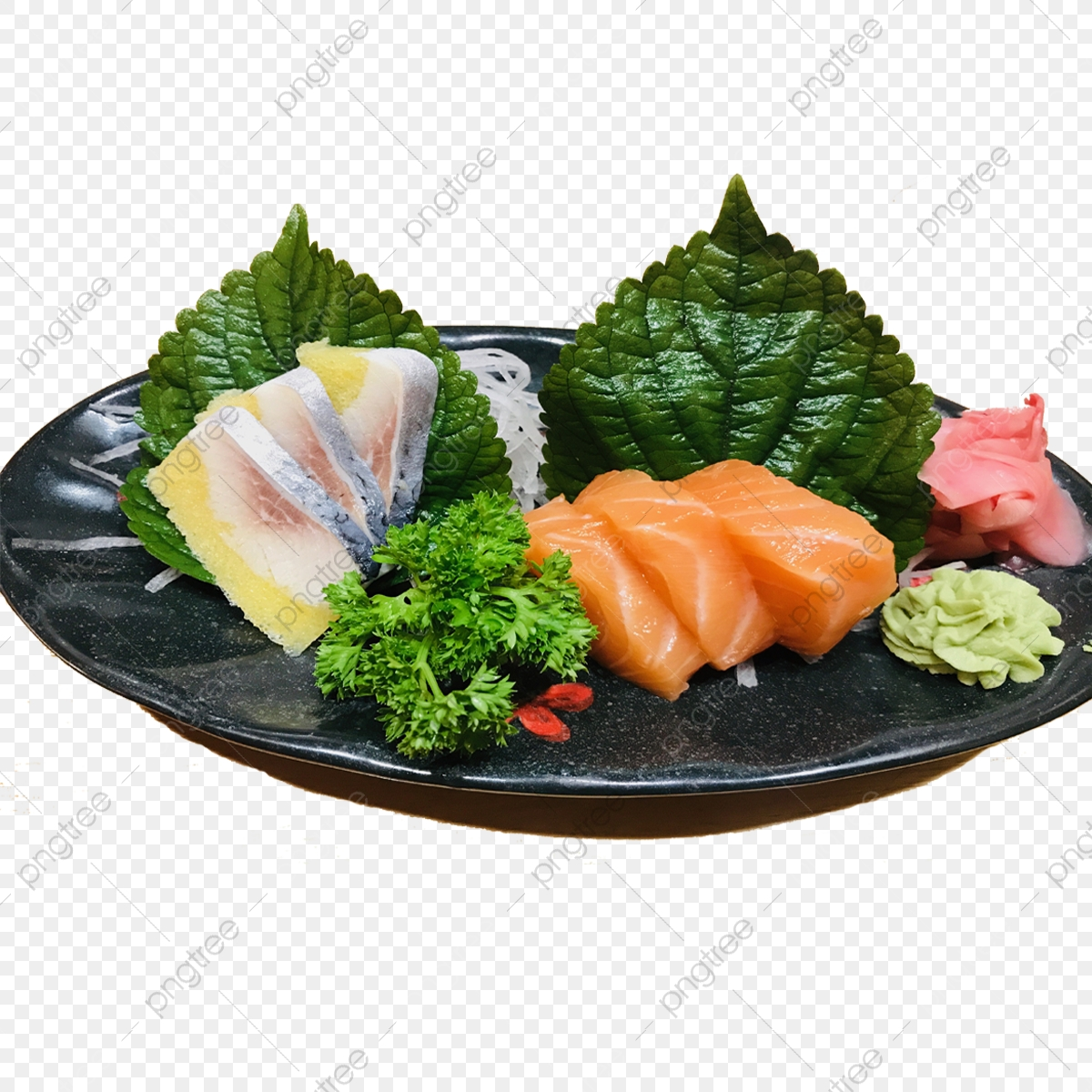 Makanan Jepang Kecil Sashimi Set Basil Lazat Makan Malam Fail
