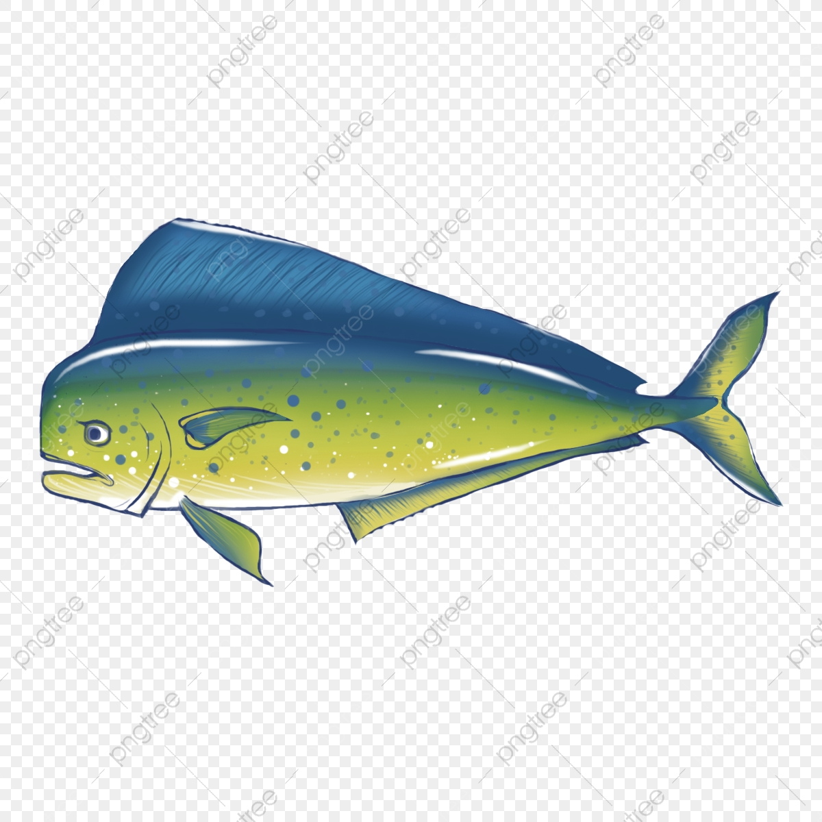 Mahi Stock Illustrations – 208 Mahi Stock Illustrations, Vectors & Clipart  - Dreamstime