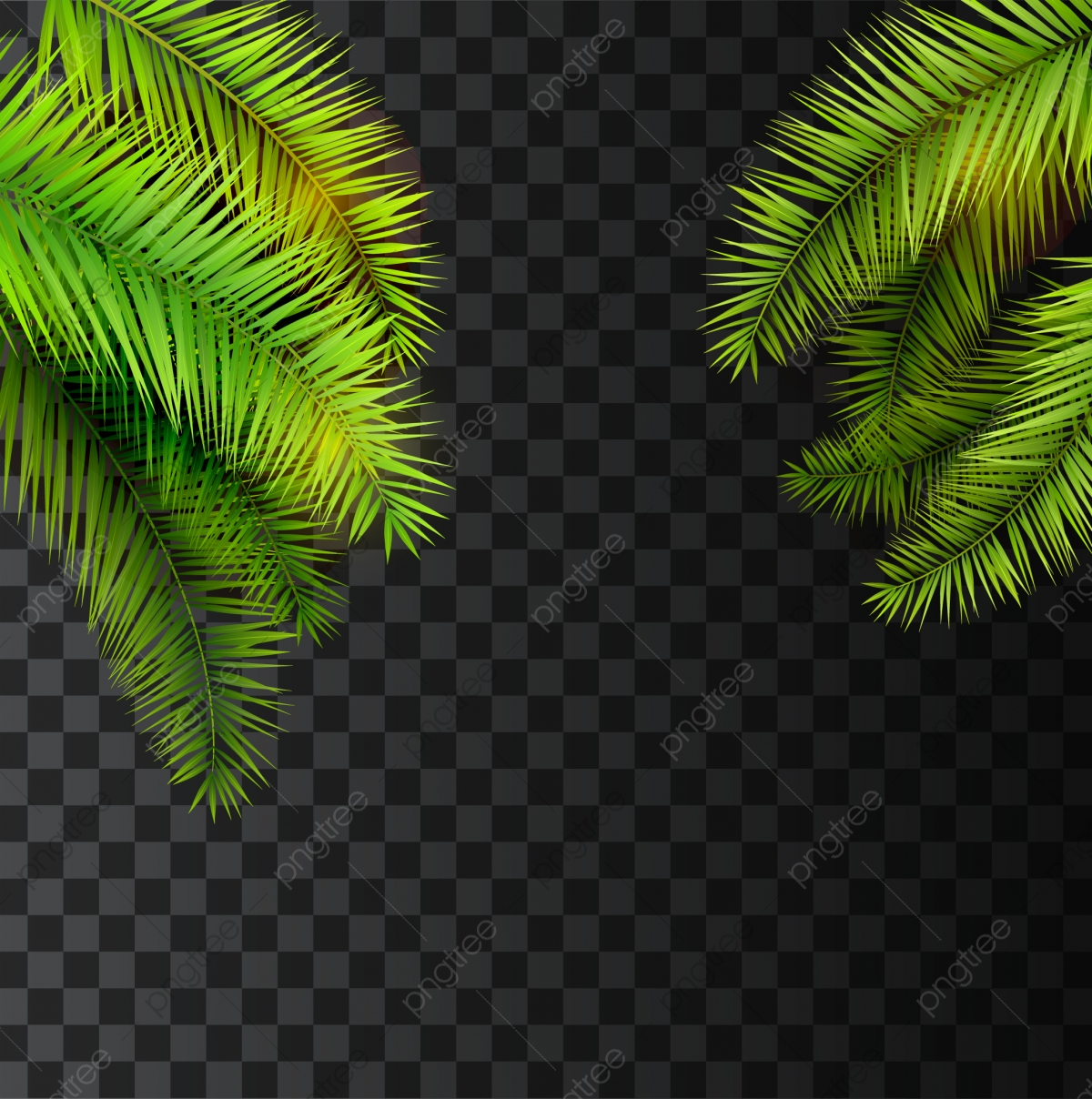 Palm Leaves Png Images Vector And Psd Files Free Download On Pngtree