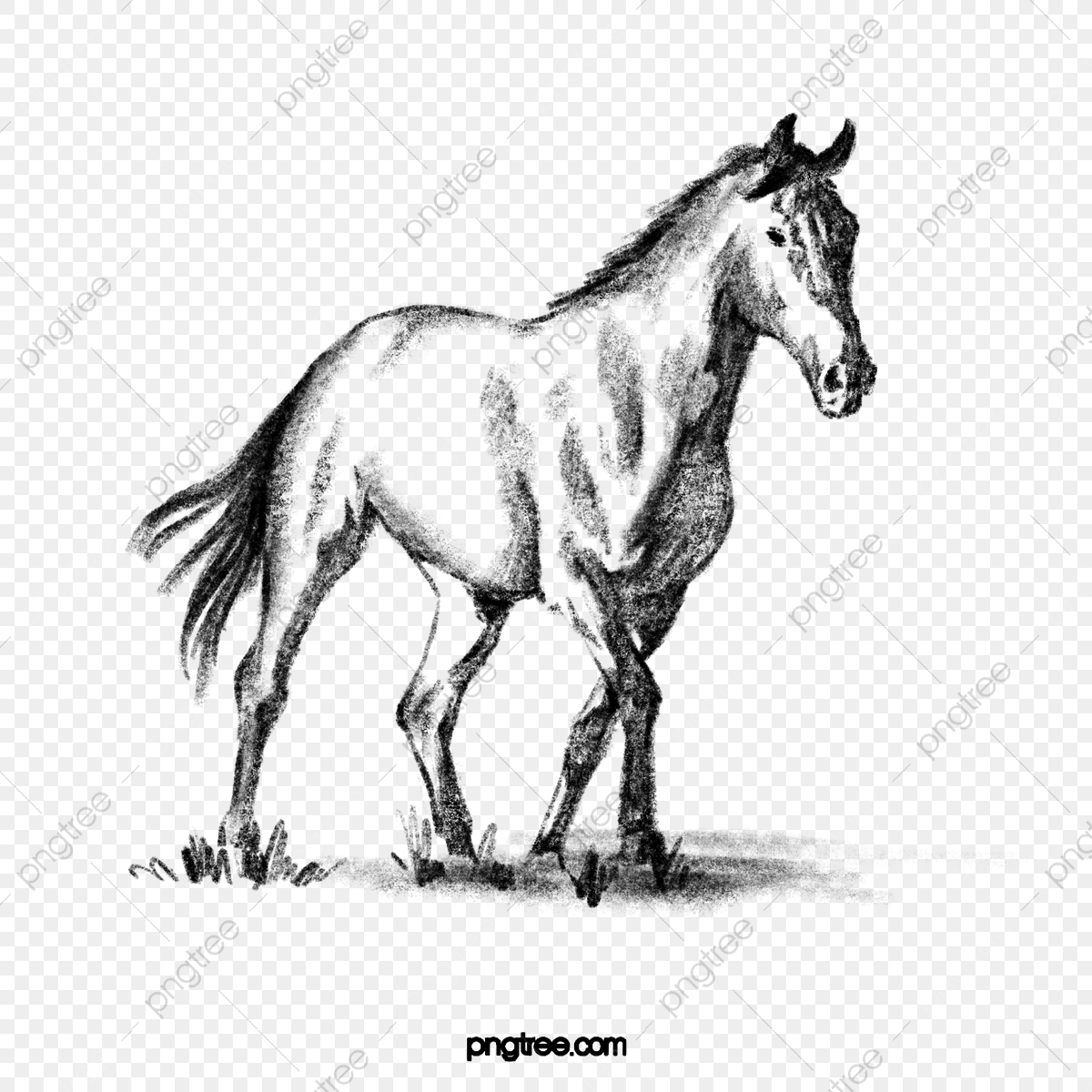 Black Hand Painted Wild Horse Running On The Grass Horse Black And White Black Hand Painted Png Transparent Clipart Image And Psd File For Free Download