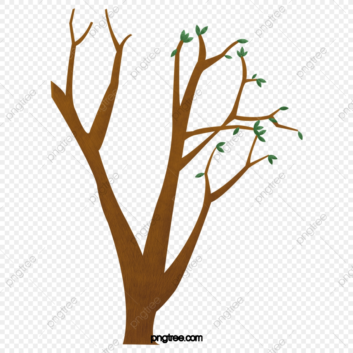 Tree, Branch, Leaves, Green, Branches, Leaf - La Rama De Un Arbol Clipart  (#356183) - PinClipart