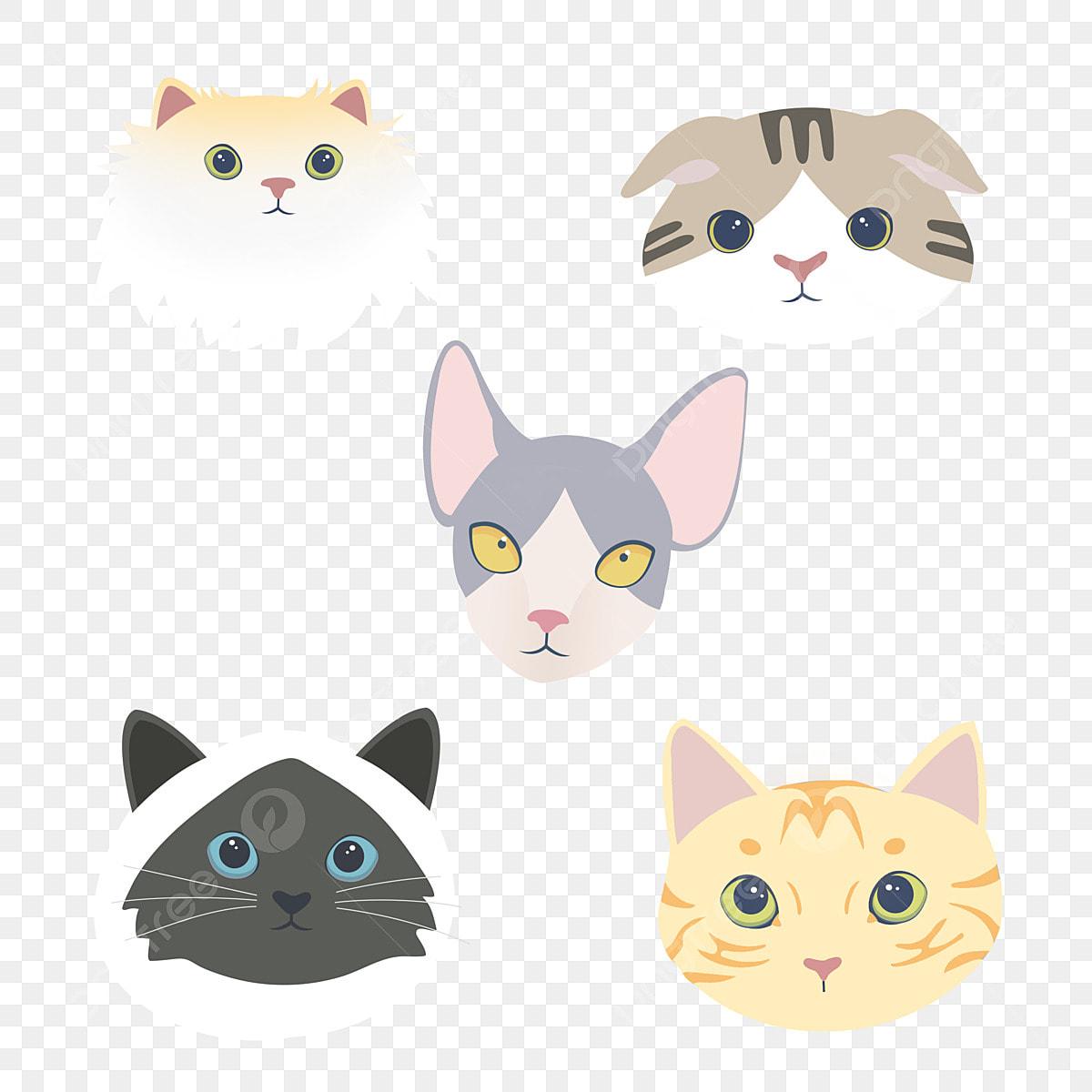 Animal Dos Desenhos Animados Combinacao Elemento Gato E Cachorro