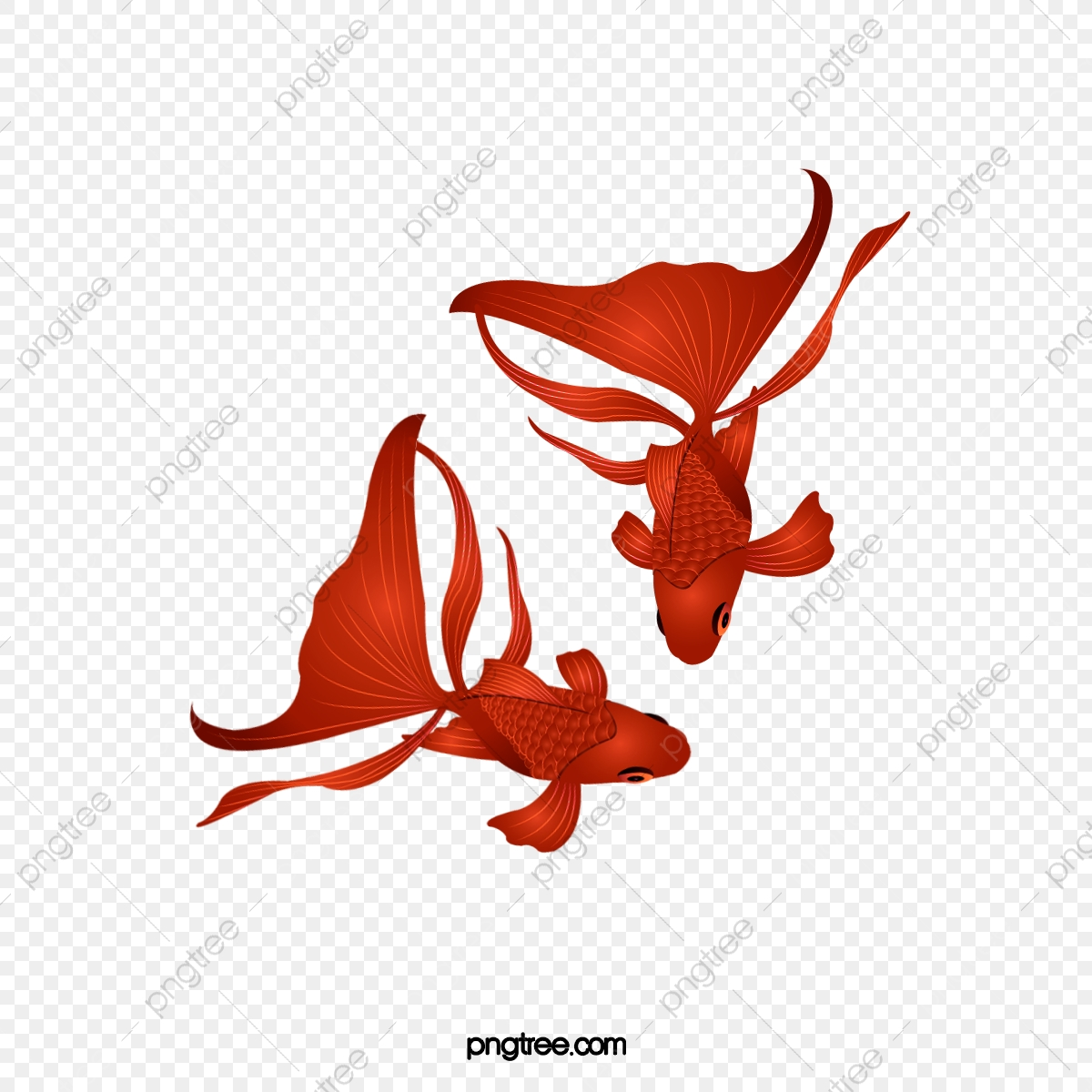 漫画手描きかわいい赤い金魚イラスト 金魚 赤 かわいい画像とpsd素材ファイルの無料ダウンロード Pngtree