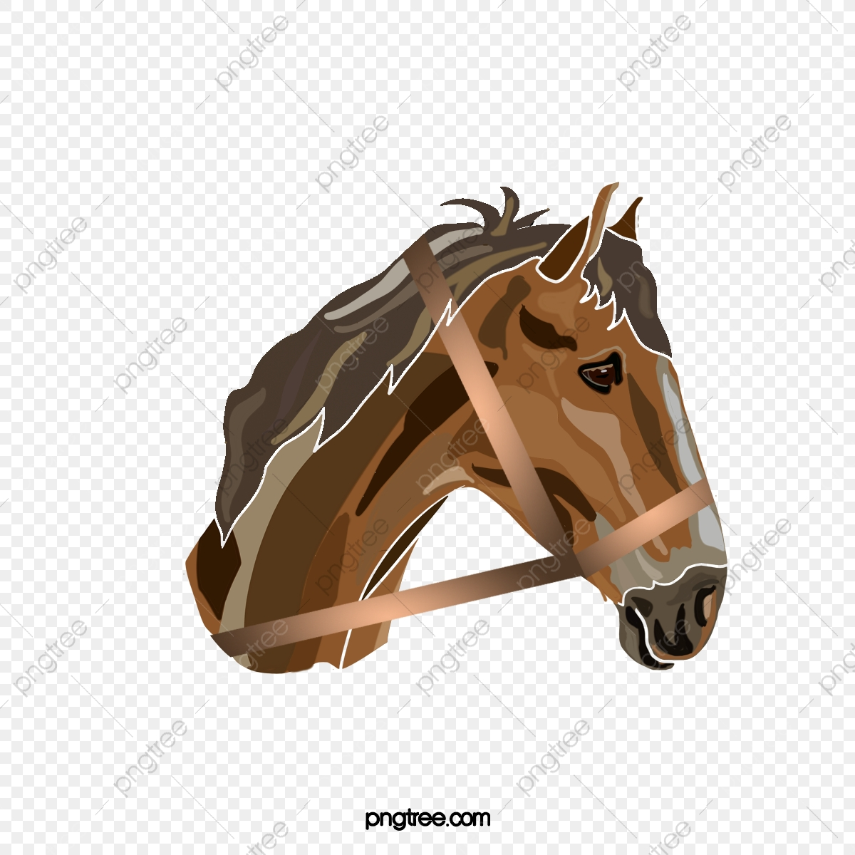 Cartoon Hand Drawn Delicate Horse Head Illustration Horse Clipart Horse Head Animal Png Transparent Clipart Image And Psd File For Free Download