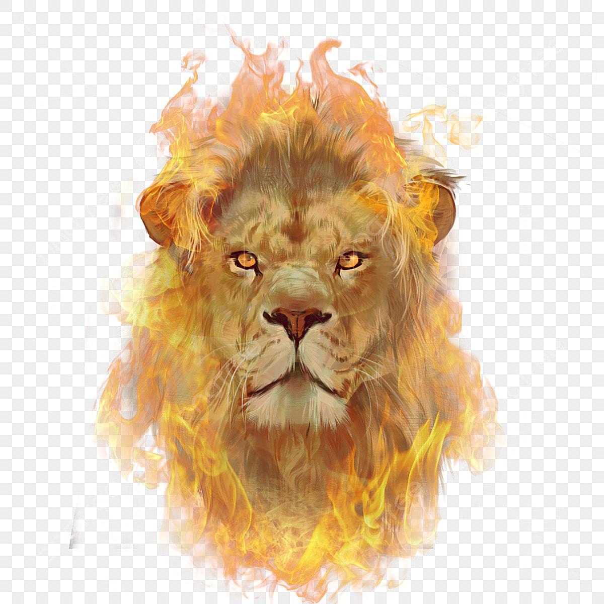 Elementos De Ilustracao De Combustao Leao De Chama Feroz Animal