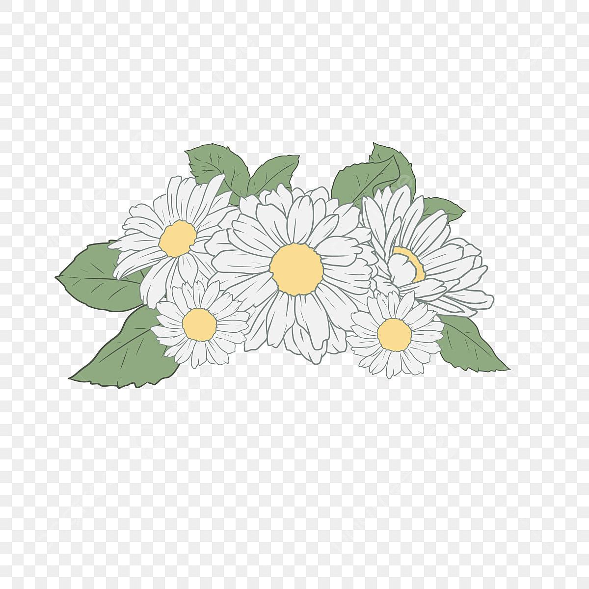 Daisy Putih Gambar PNG   File Vektor Dan PSD   Unduh Gratis Di Pngtree