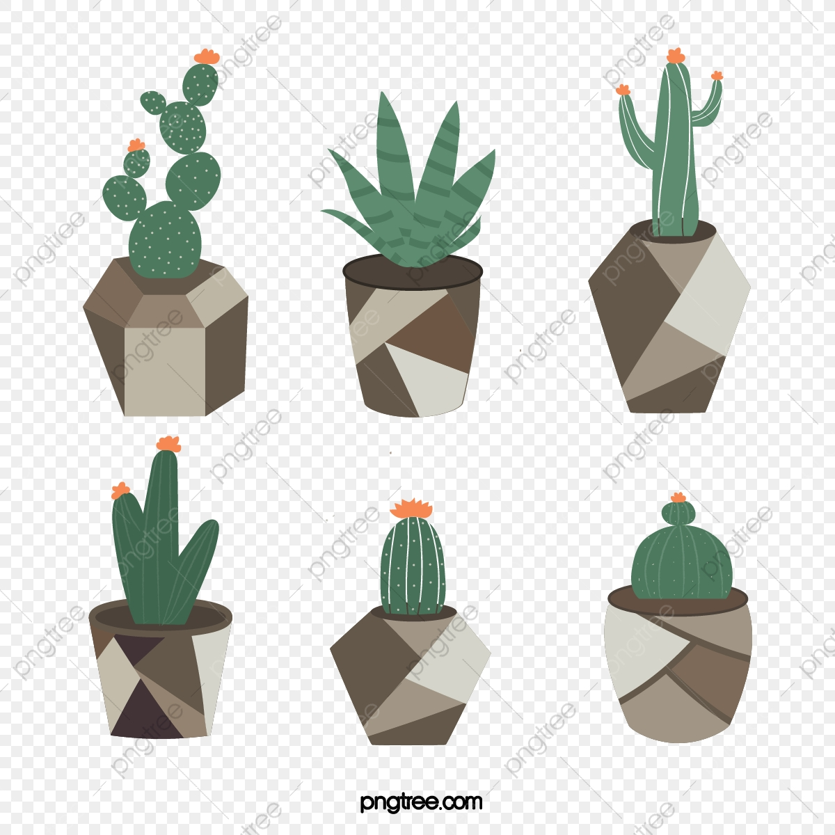 Ins Style Morandi Cactus Succulent Sticker Journal Scrapbook Instagram Morandisse Cactus Succulents Png And Vector With Transparent Background For Free Download