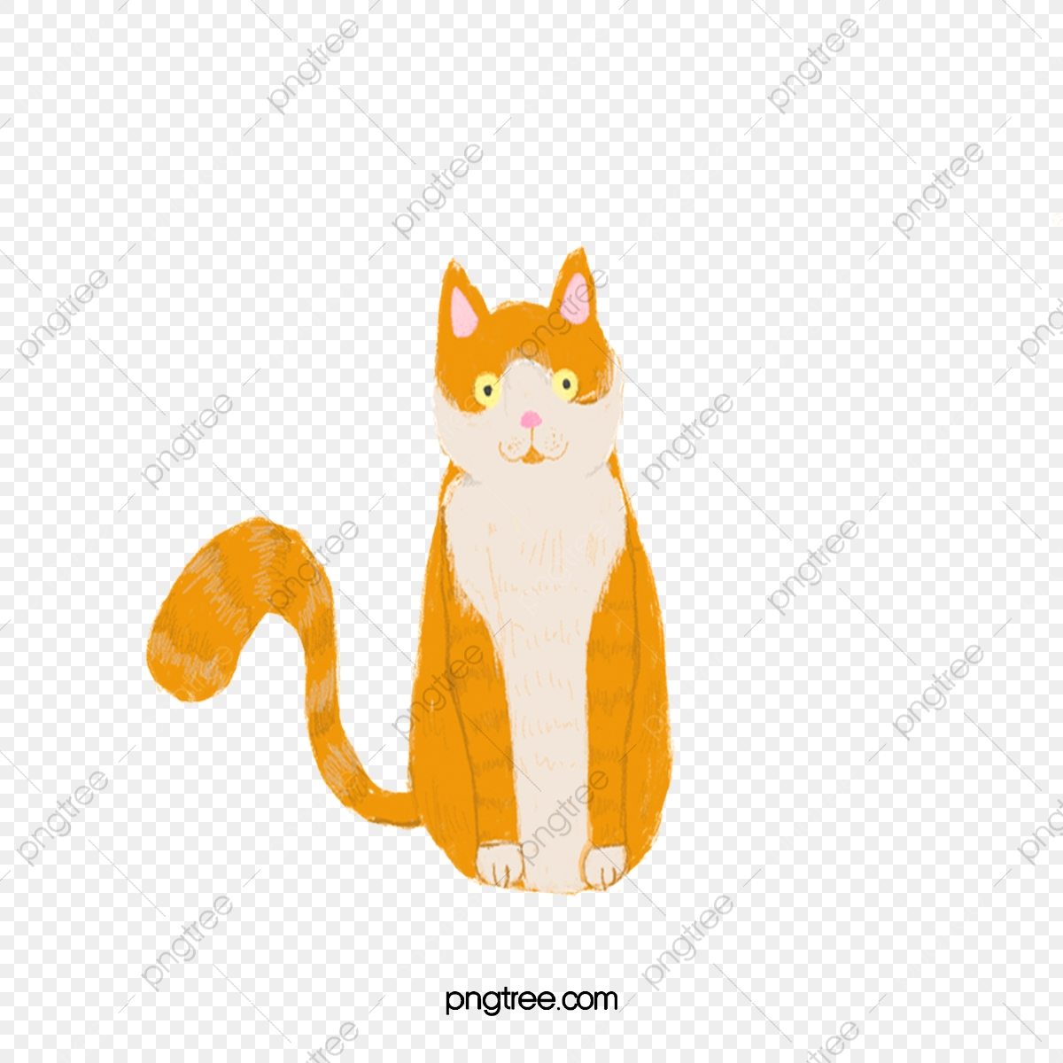 オレンジ色の動物猫 オレンジ色 動物 猫画像とpsd素材