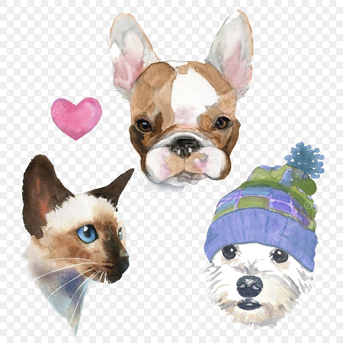 Dibujado A Mano Acuarela Dibujos Animados Perro Gato Siames