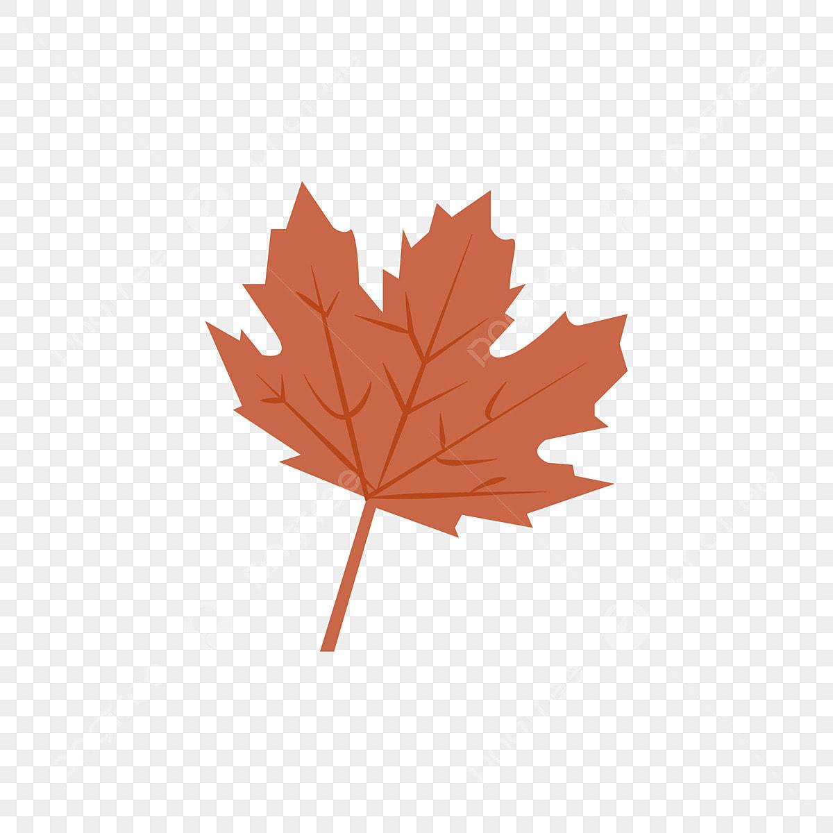 - Autumn Leaf Orange Color Template And Vector, Orange Tree