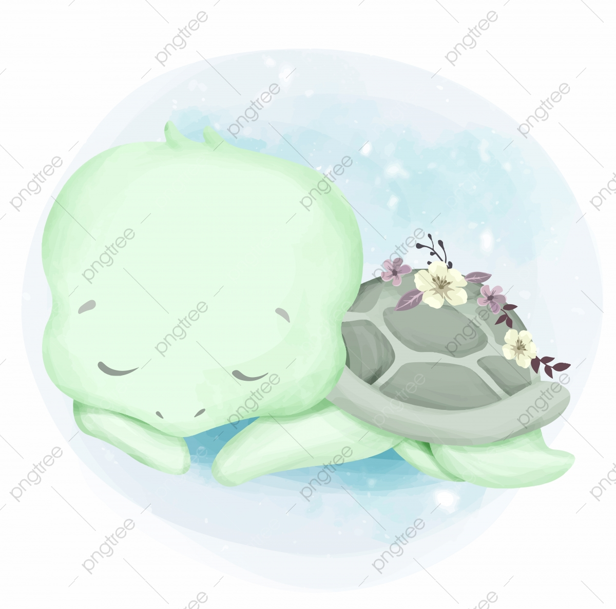 Cute Baby Turtle To Sleep Adorable Animal Art Png And Vector