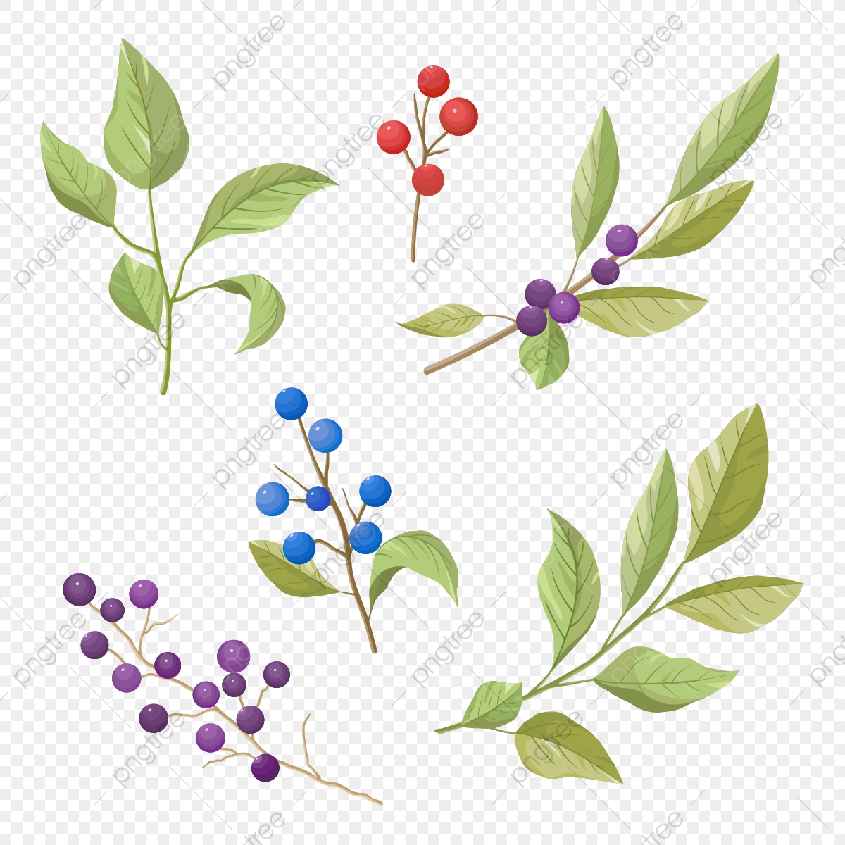 Berry clipart mix, Berry mix Transparent FREE for download on  WebStockReview 2020