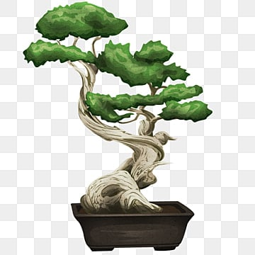 Bonsai Tree Png Images Vector And Psd Files Free Download On Pngtree