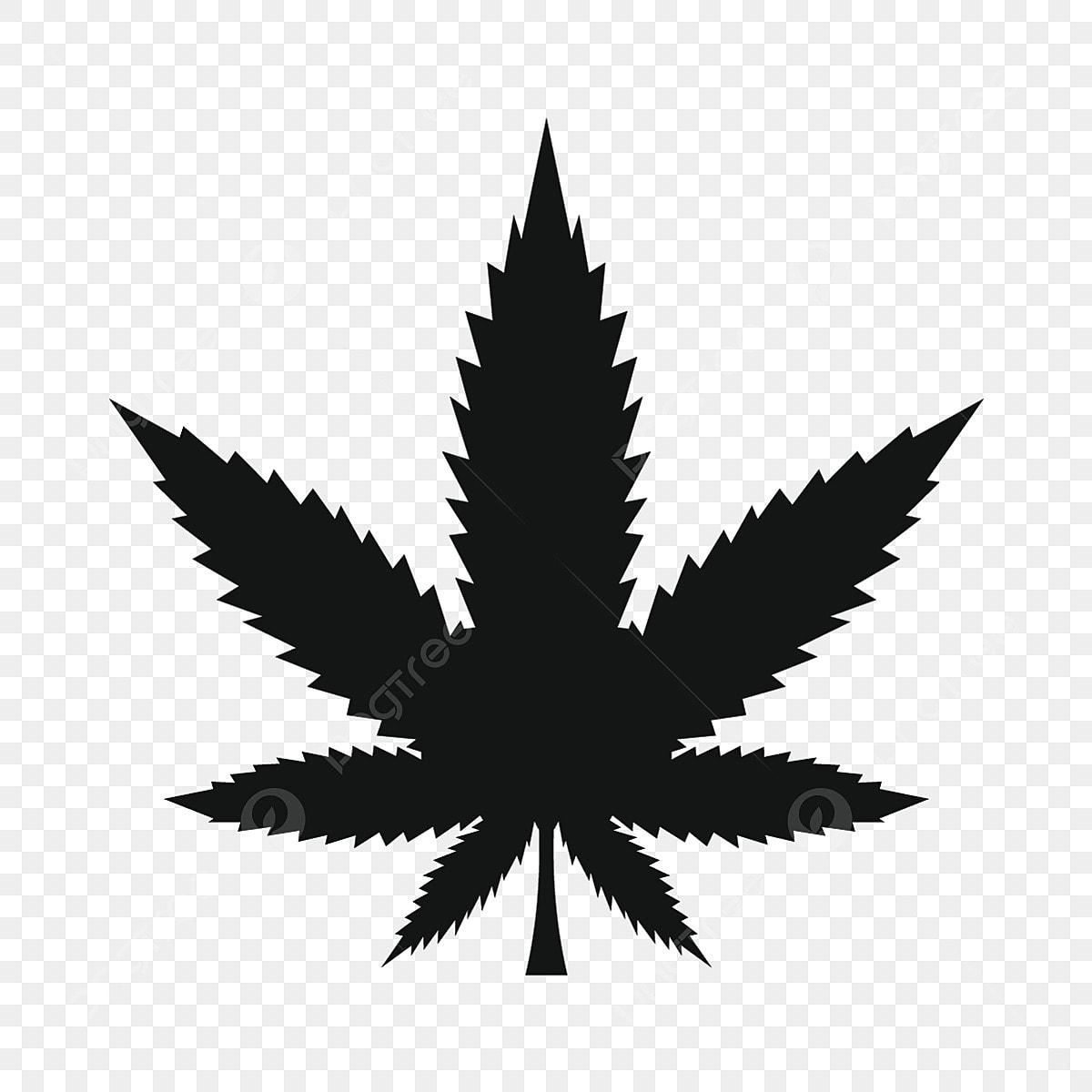gambar ikon daun ganja mudah gaya mudah ikon daun ikon gaya ikon ringkas png dan vektor untuk muat turun percuma https ms pngtree com freepng cannabis leaf icon simple style 5151872 html