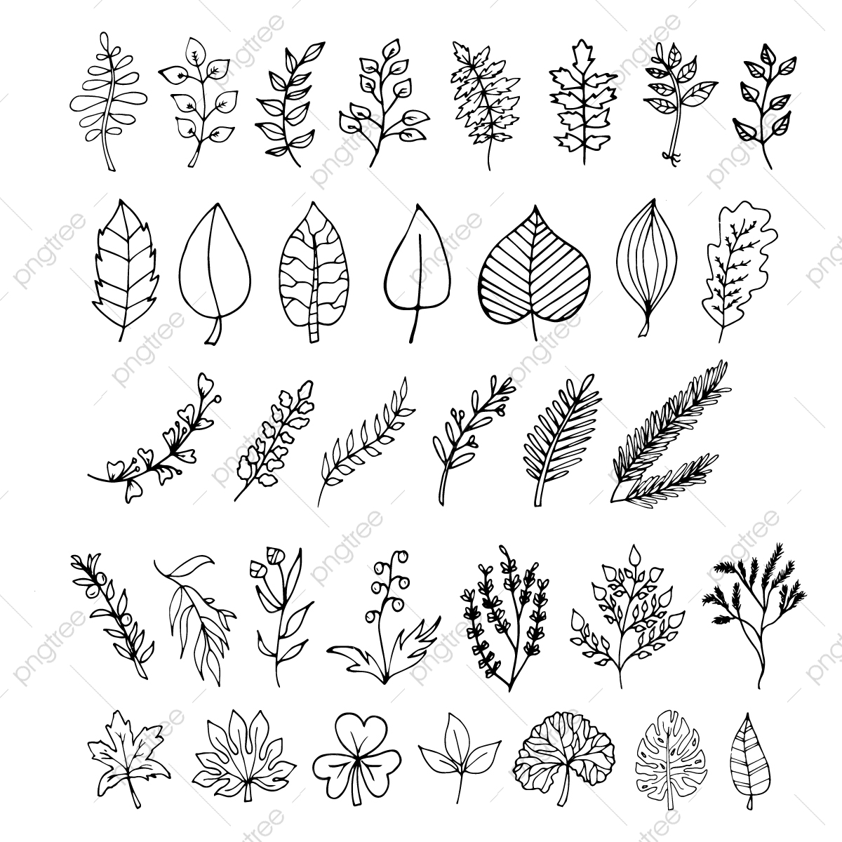 Plants Leaves Botanical Cute Cartoon Doodles Leaf Leaves Doodle Png And Vector With Transparent Background For Free Download
