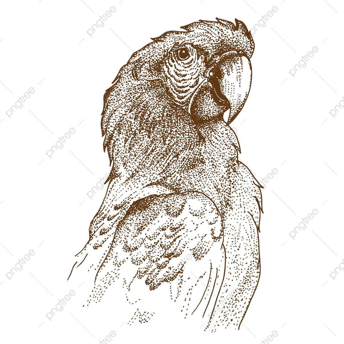 Pontilhismo Desenho De Arara Arara Papagaio Ave Png E Vetor