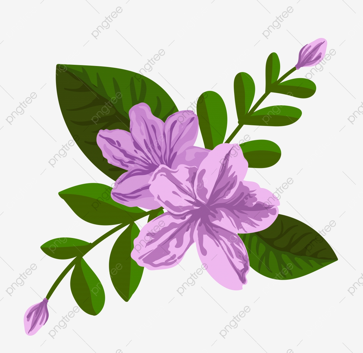 Purple Vector Flower Illustration Tropical Blossom Aloha Artistic Background Png And Vector With Transparent Background For Free Download