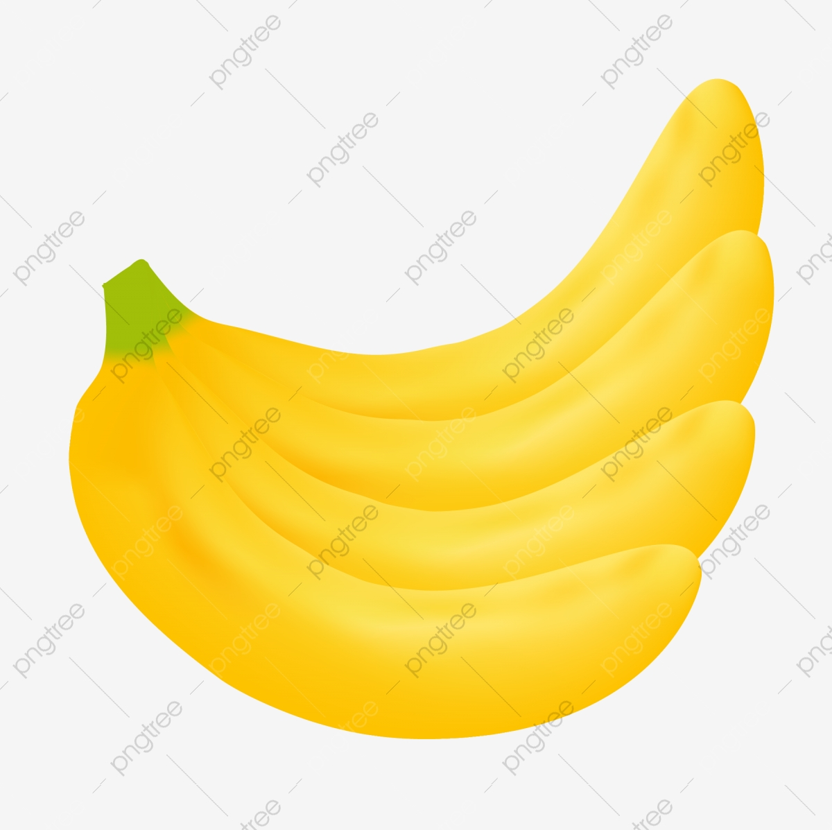 realistic banana fruits fruit vector illustration png and vector with transparent background for free download pngtree