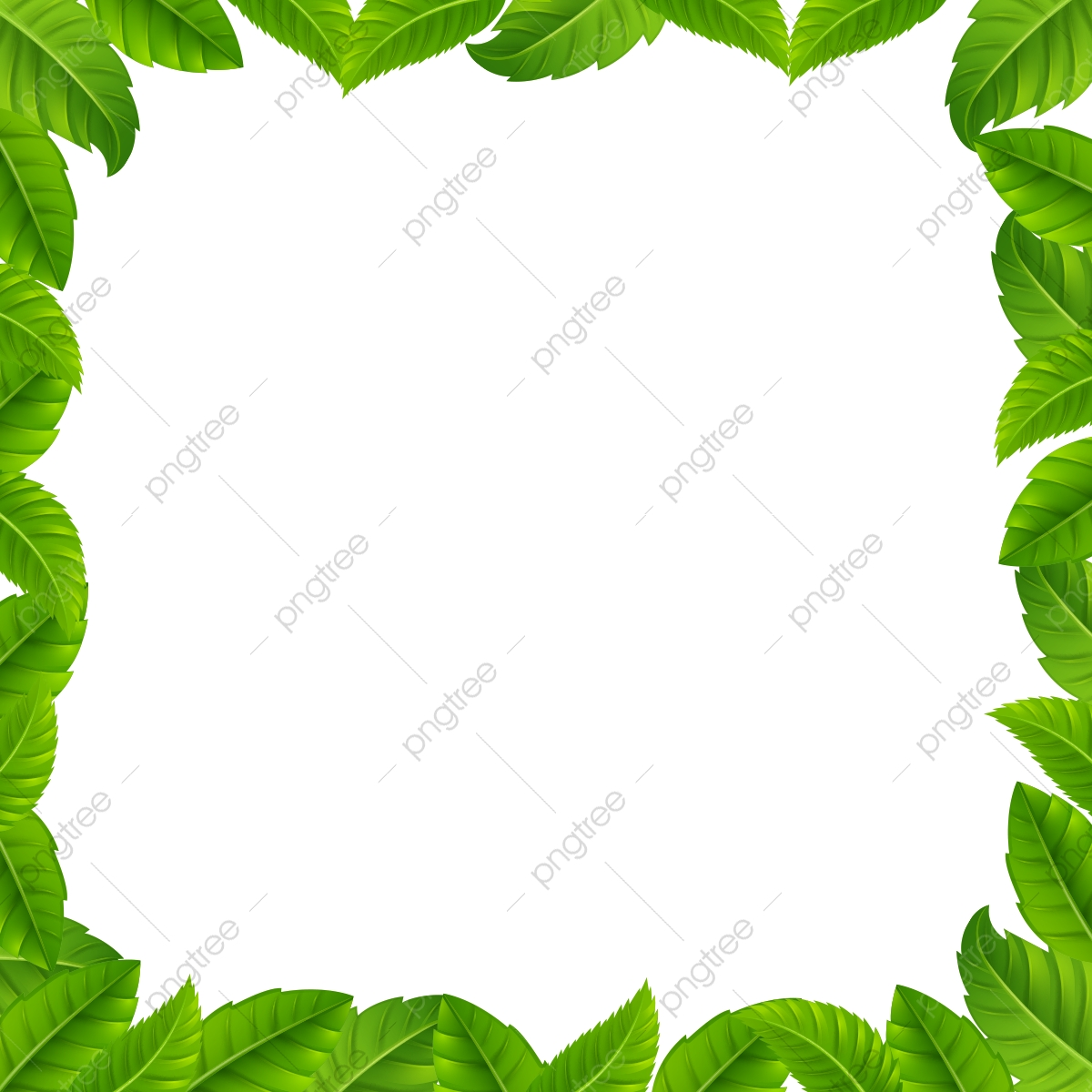 gambar bingkai hijau daun tropika tropika daun hijau png dan psd untuk muat turun percuma pngtree