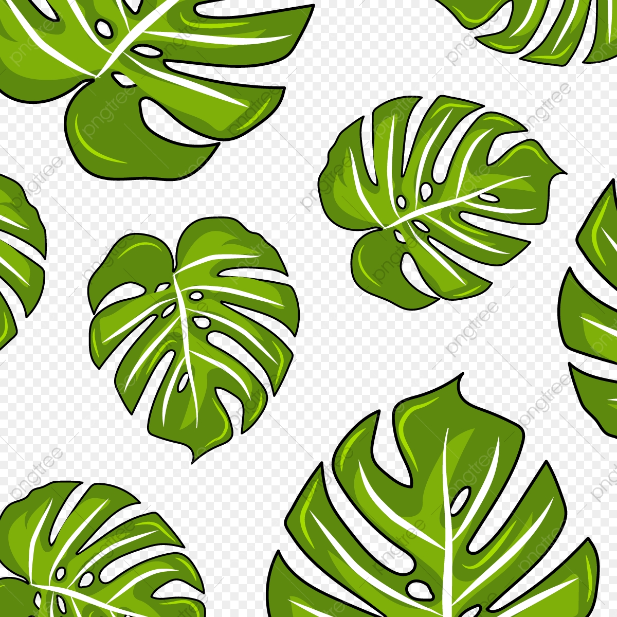 Monstera PNG Images | Vector and PSD Files