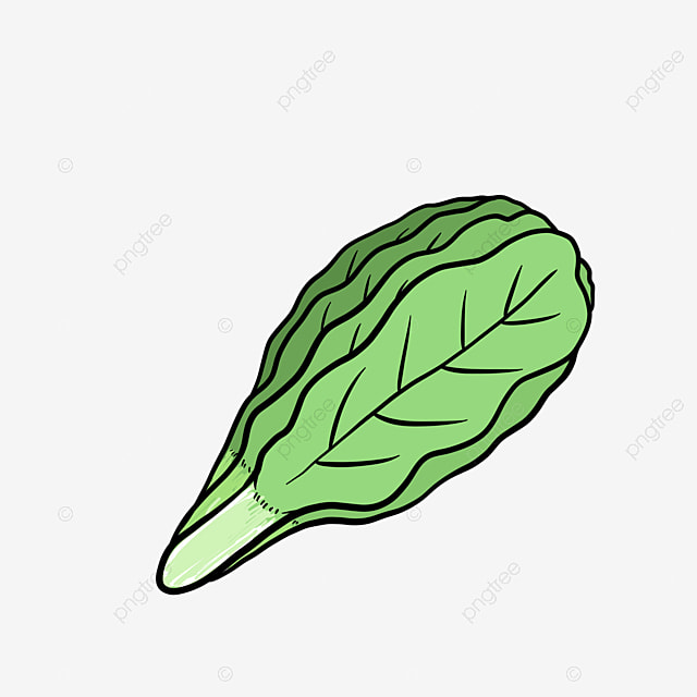 Gambar Sawi Hijau Yang Sehat Sayur Buah Organik Png Transparan Clipart Dan File Psd Untuk Unduh Gratis