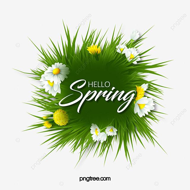 green spring spring flower border