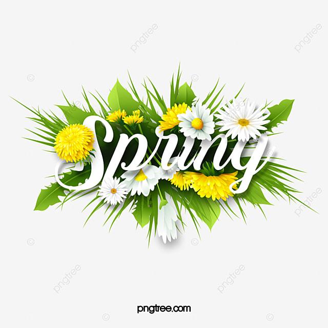 spring flower spring green plant