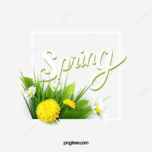 flower spring green plant