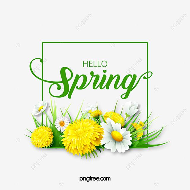 spring green flower flower plant