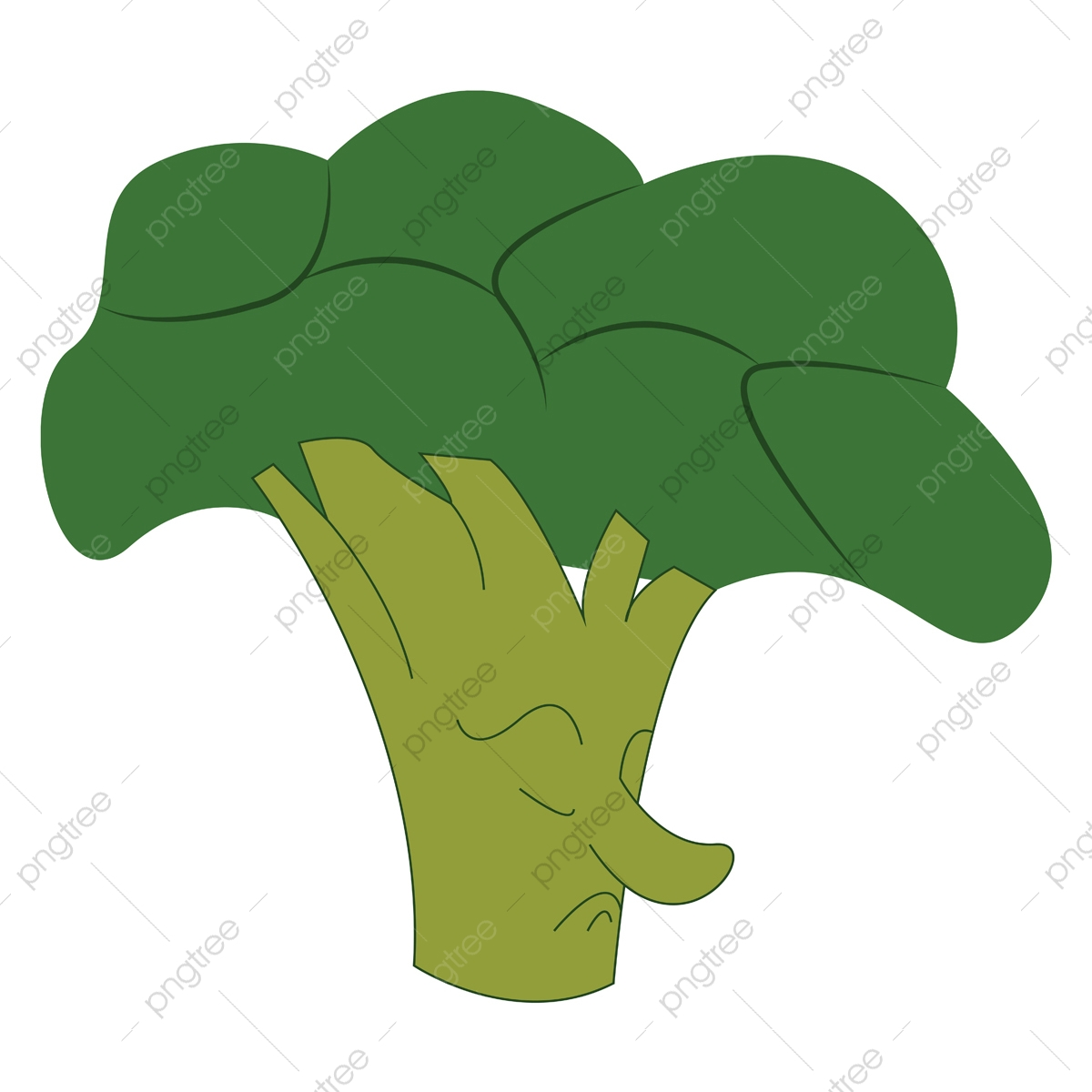 broccoli vector png vector psd and clipart with transparent background for free download pngtree https pngtree com freepng a broccoli vector color illustration 5268482 html