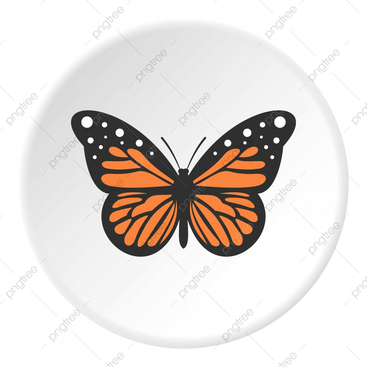big butterfly icon circle circle icons butterfly icons big png and vector with transparent background for free download https pngtree com freepng big butterfly icon circle 5282064 html